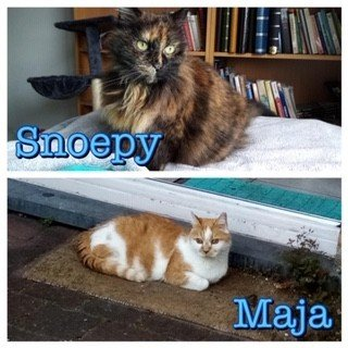 Duo Maya & Snoepy