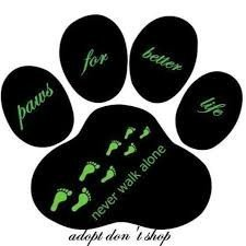 Paws For Better Life
