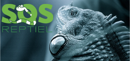 Reptile Rescue Center - SOS REPTIEL vzw