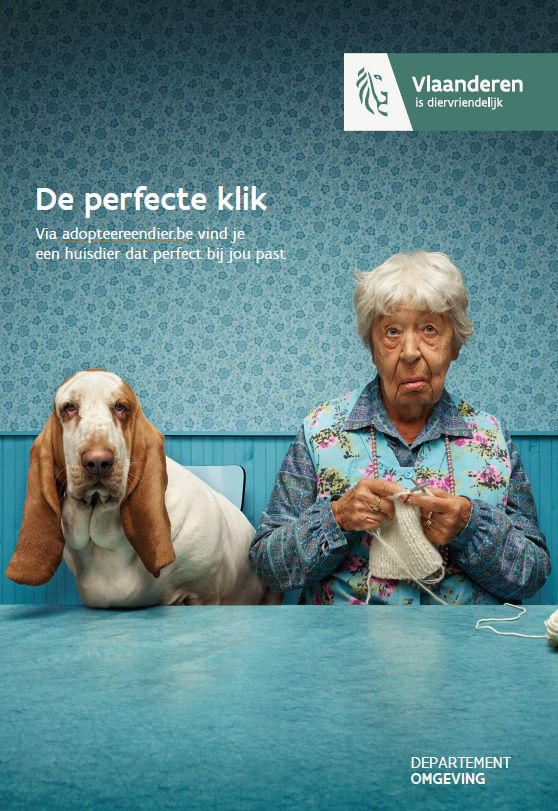 campagne hond